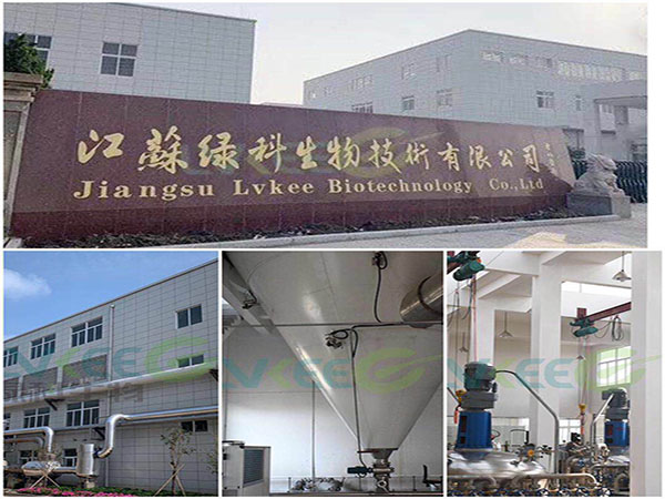 江苏绿科生产基地