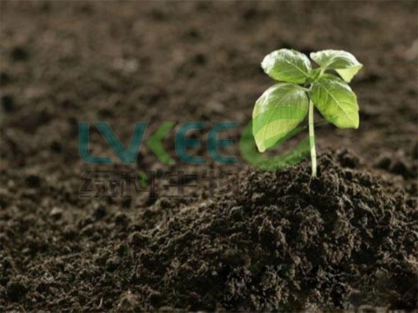 使用过枯草芽孢杆菌的土壤