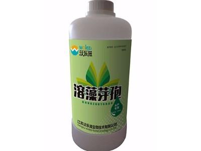 溶藻芽孢沃乐滋