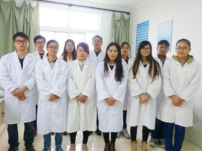 绿科技术团队