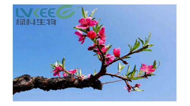 """""""烟花三月下扬州""""3月我在江苏绿科等你!"""