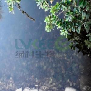 扬州市某河水生态修复项目微生物处理案例!