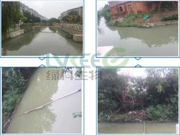 扬州市某河水为处理