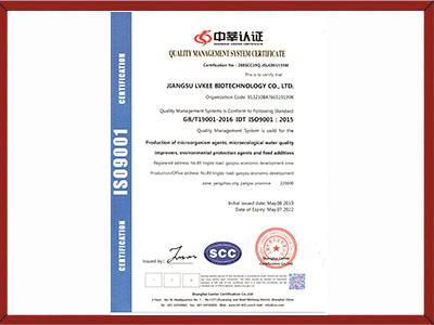 质量管理体系认证ISO9001英文