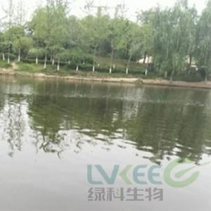 【郑州】荥阳新田城景观湖处理案例