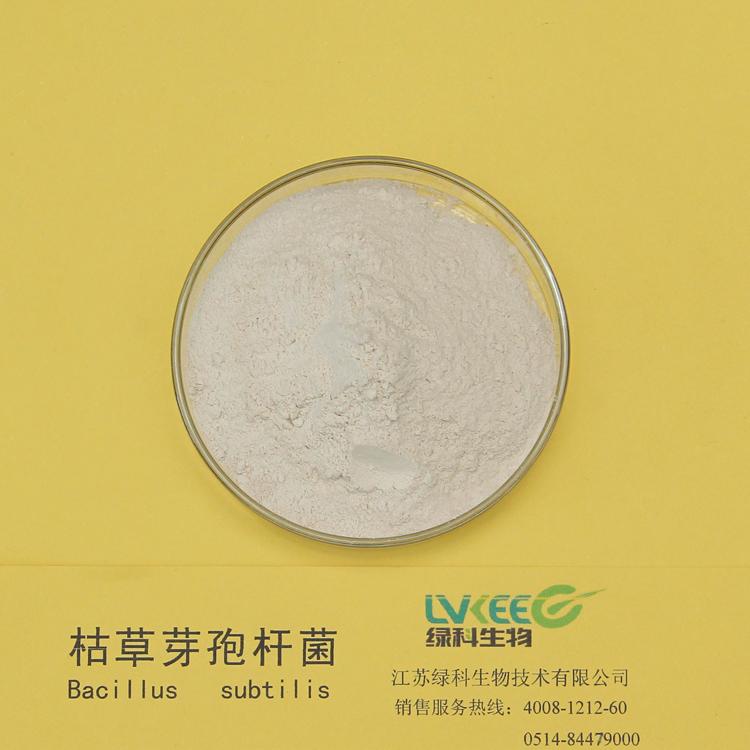 枯草芽孢杆菌2
