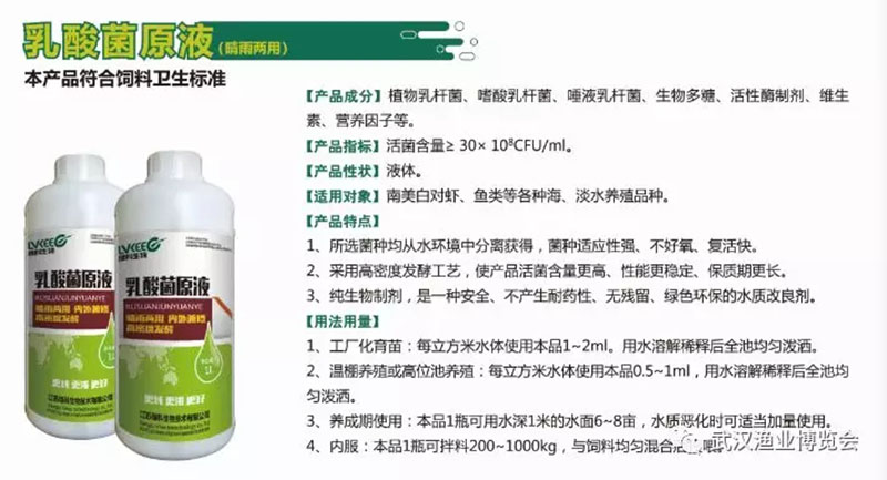 江苏绿科生物乳酸菌原液